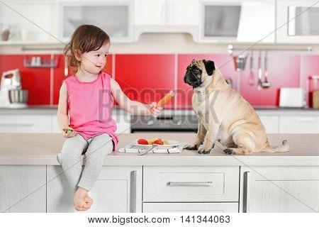Adorable little girl feeding cute pug on kitchen table