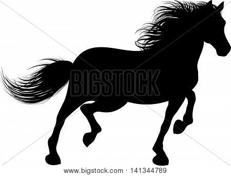 Drawing the black silhouette of running horse on a white background