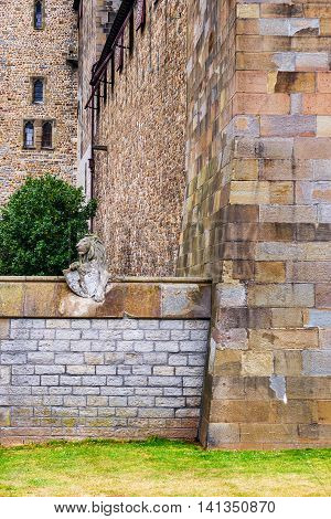 Wall With Animals In Cardiff Castle Of Cardiff In Wales
