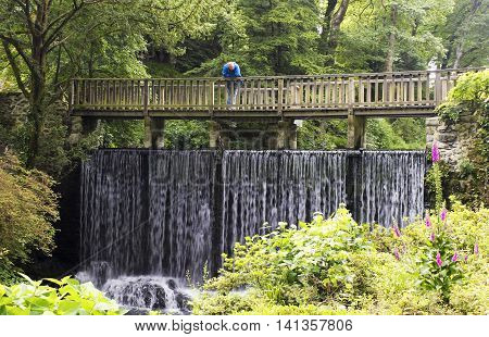CONWY, WALES, JUNE 27. Bodnant Garden on June 27, 2016, near Conwy, Wales. A visitor to Bodnant Garden near Conwy Wales gazes down from atop Waterfall Bridge.