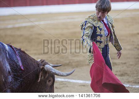 Andujar Spain - September 7 2014: The Spanish Bullfighter Manuel Benitez El Cordobes bullfighting with the crutch in the Bullring of Andujar Spain
