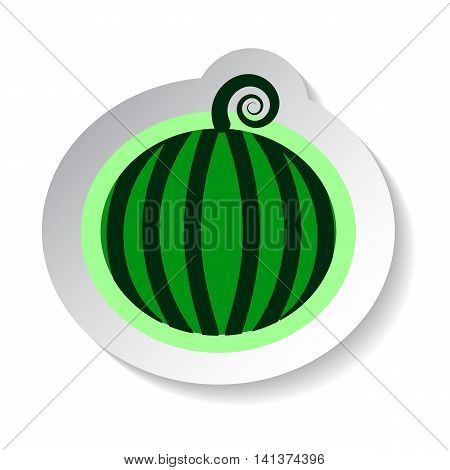 Watermelon vector illustration isolated on white background. Flat style fruit with shadow. Garden fruit watermelon patch. Watermelon sticker style image. Summer fruit harvest. Minimal style watermelon
