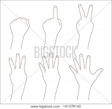 Counting hands 0 to 5 isolated on white background