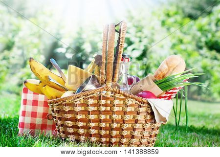Picnic Wattled Basket Setting Food Summer Time