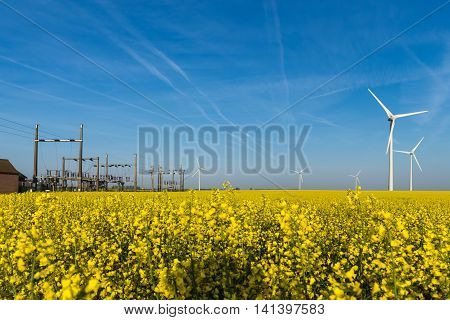 Wind turbine generators and electrical substation in the yellow rapeseed field under the blue sky