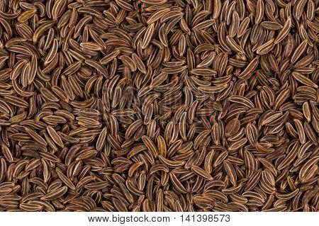 Close Up Caraway Seeds