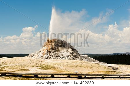 White Dome Geyser Erupting Yellowstone National Park Geothermal Activity