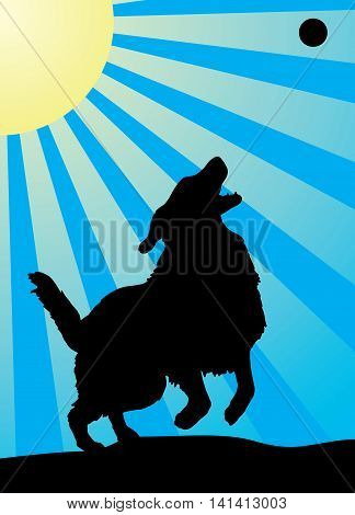 Dog Jumping for a Ball is an illustration of a golden retriever playing an jumping for a ball. Includes a blue sky background with sun and sun rays.