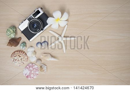 Vintage old camera with fish star and sea animal  on the wooden white