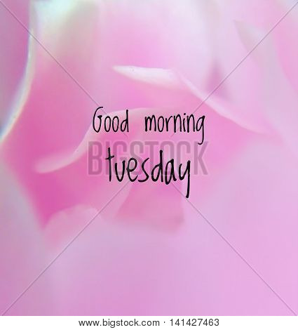 Inspirational quote on blurred flower background...good morning Tuesday