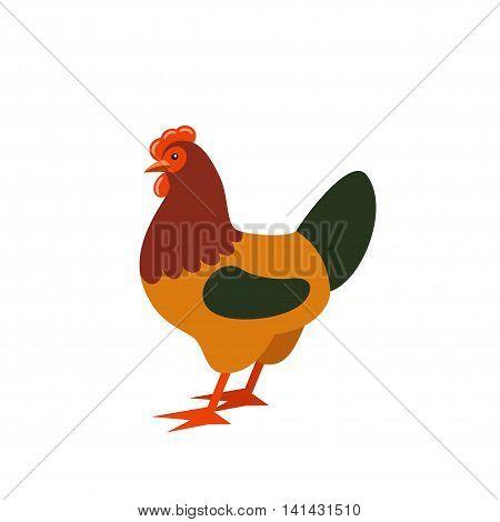 Cartoon rooster. Farmer isolated animal. Vector illustration