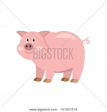 Cartoon pig. Farmer isolated animal. Vector illustration