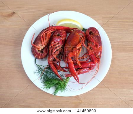 Boiled crawfish color with lemon and dill lie on a round white plate on a wooden table surface. Top view close-up