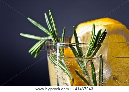 Alcoholic Drink With Lemon And Rosemary