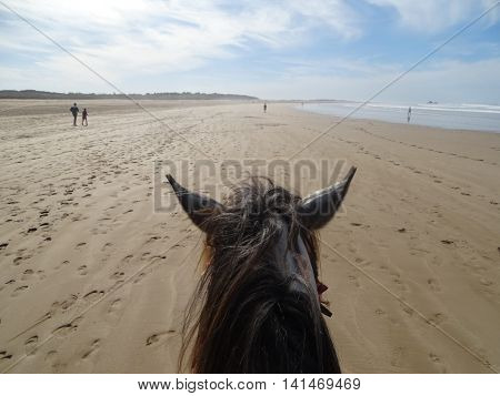 A Beach picture with a horse - Marocco.