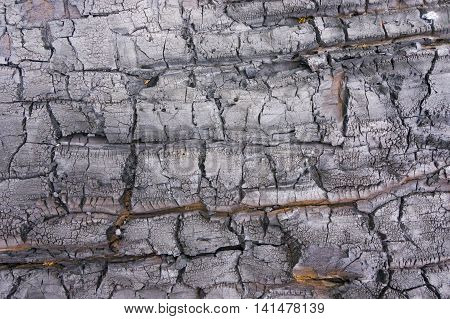 Fragment of black burnt log wall, useful as background