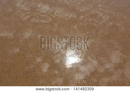 Wet Yellow Sand Background.
