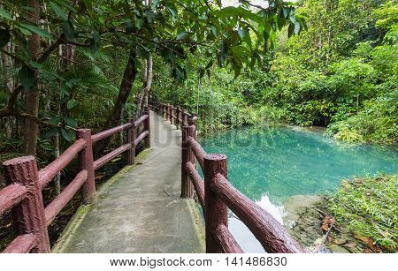 Walk way leading to Emerald Pool in Krabi South of Thailand