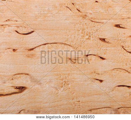 Background of birch wood, texture birch wood.