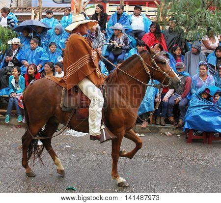Cajamarca Peru - February 8 2016: Peruvian paso horse with rider in costume prances in parade in Cajamarca Peru on February 8 2016
