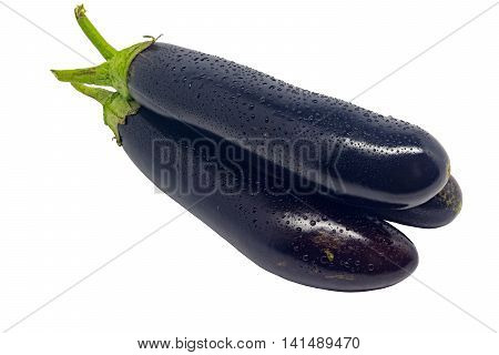 Freshly picked eggplants with water droplets isolated on white bacground