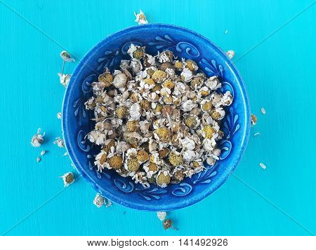 dried chamomile on a turquoise wooden background