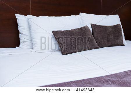 King Size Travel Accommodations