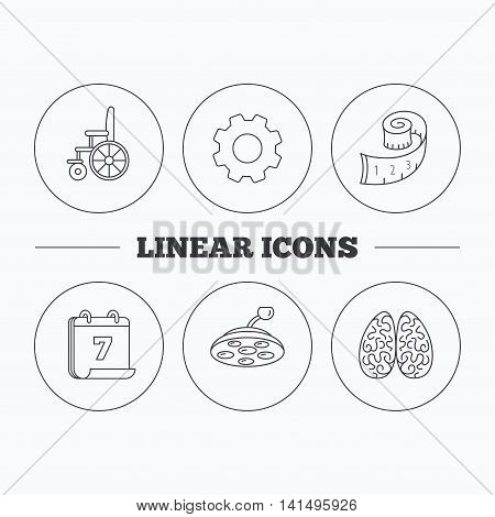 Wheelchair, neurology and weight loss icons. Surgical lamp linear sign. Flat cogwheel and calendar symbols. Linear icons in circle buttons. Vector