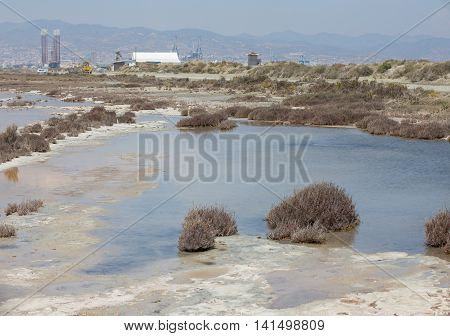 Salt Lake at Lady's Mile, Limassol, Cyprus with the Limassol Port in the backgound