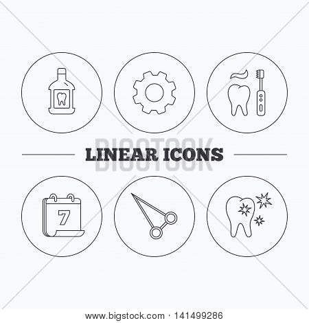 Mouthwash, healthy teeth and peans forceps icons. Brushing teeth linear sign. Flat cogwheel and calendar symbols. Linear icons in circle buttons. Vector