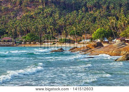 Tropical Rock Beach Summer Nature Landscape
