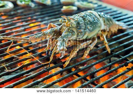 Grill Lobster Bbq
