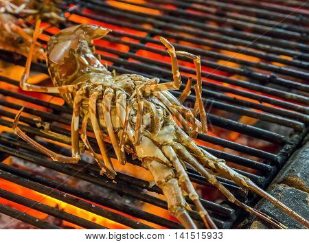 Cooked Lobster Seafood Barbecue Grill