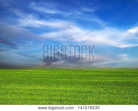 Green Field nature blue sky horizon landscaped, plain