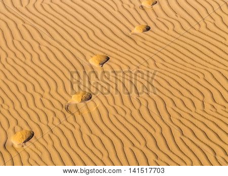 Traces On Song In Desert