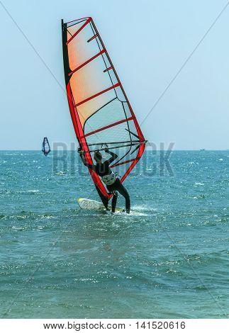 Surfing fun In sea summer sport wildlife travel