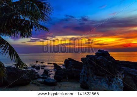 Sunset Palm Trees Caraibe Sea