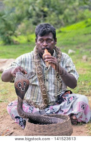 POLONNARUWA SRI LANKA - JANUARY 31 2016: Fakir Snake charmer adult man playing on musical instrument before snake at a basket. focus on snake