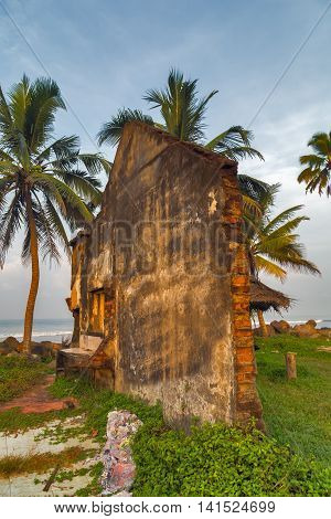 Tsunami destruction crash house ruins wildlife travel
