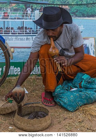 NEGOMBO SRI LANKA - JANUARY 28 2016: Snake charmer adult man playing on musical instrument before snake at a basket