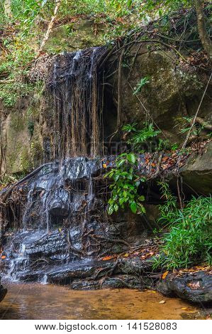 Cool Water Waterfall In The Rain Forest, Phnom Kulen Cambodia.