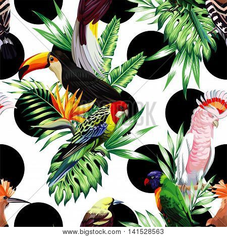 Tropic exotic multicolor birds toucan parrot macaw hoopoe with tropical plants banana palm leaves flowers Strelitzia on a white background with black circle. Print jungle seamless vector pattern