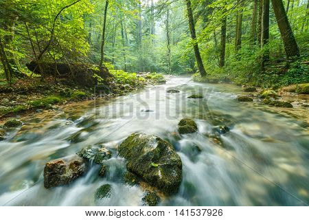 Morning Landscape With River And Forest