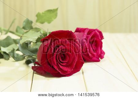 Two red rose flower on wooden background