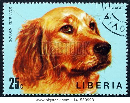LIBERIA - CIRCA 1974: a stamp printed in Liberia shows Golden Retriever Dog circa 1974