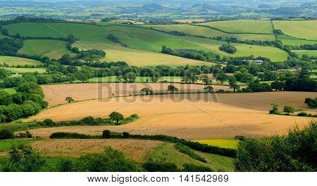 Beautiful farmland landscape in Marshwood Vale near Morcombelake in Dorset England