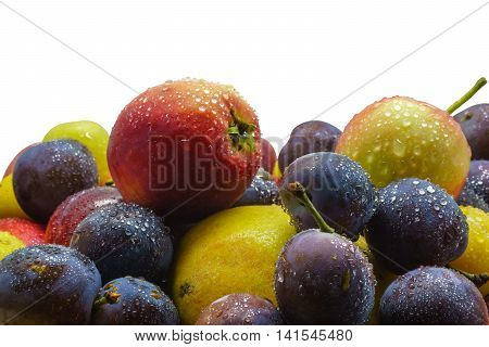 Fruit freshly picked apple plum cherry plum with water drops isolated on white background