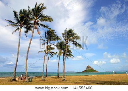 Chinaman's Hat, O'ahu, Hawaii..