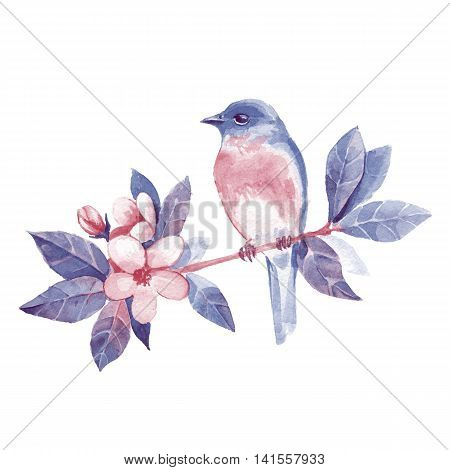 Bird on branch 1. Hand drawn watercolor illustration with flowers