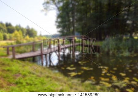 photographed the territory in which is located the marsh, the end of the summer season, open space, defocus